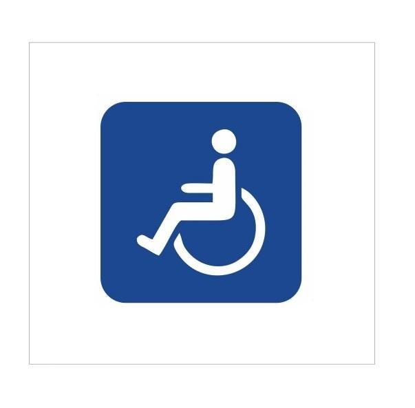 تابلو راننده معلول