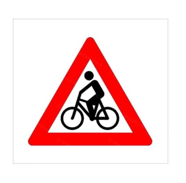 عبور دوچرخه سوار